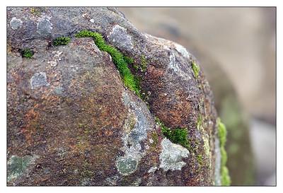 Decorated Stone (75214468)