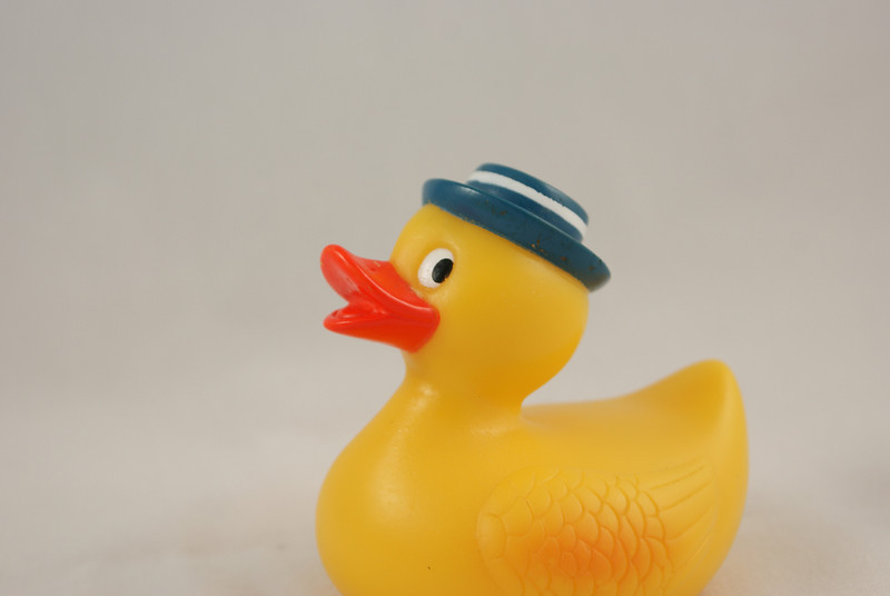 My 3 year old asked me to take some pictures of her rubber duckies...