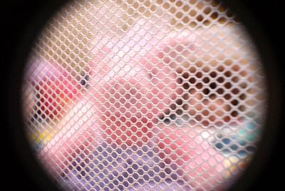 Pig screen peep hole