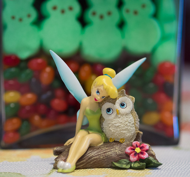 Tink and the Owl