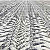 truck tire tracks in the sand