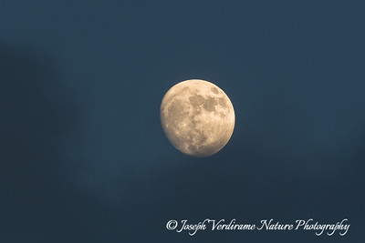 Full moon emerging from cloud cover