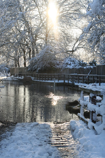 The Ford in snow