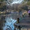 Basingstoke Canal in winter