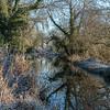 Frosty morning on the Basingstoke Canal