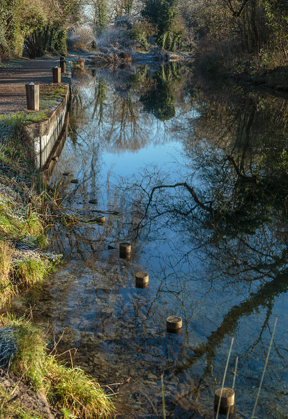Reflections in Basingstoke Canal on frosty morning, by Odiham Castle wharf
