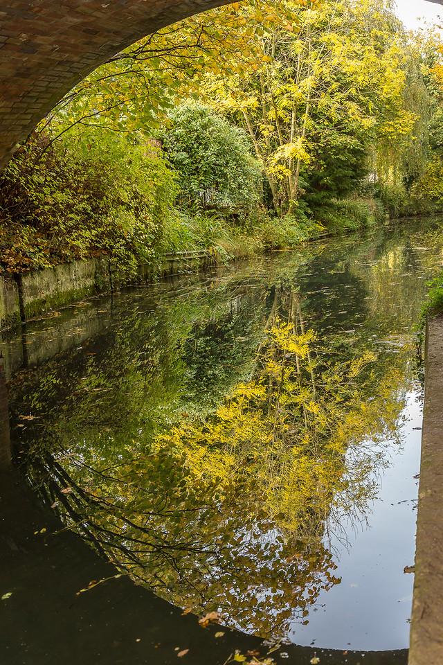 Under the bridge, Basingstoke Canal
