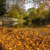 The Ford in Autumn, North Warnborough