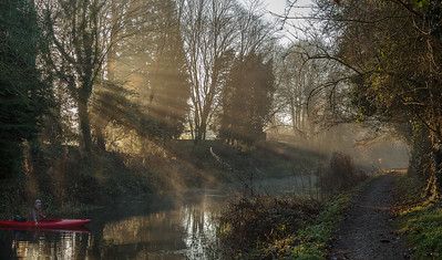Shafts of winter sun on Basingstoke Canal