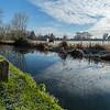 Basingstoke Canal - in winter sun