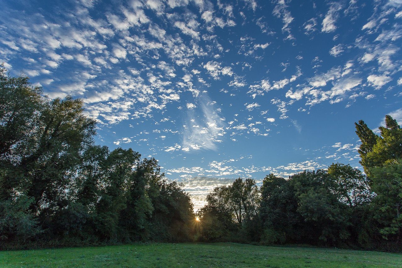 North Warnborough - the field from the ford to the castle, setting sun in autumn