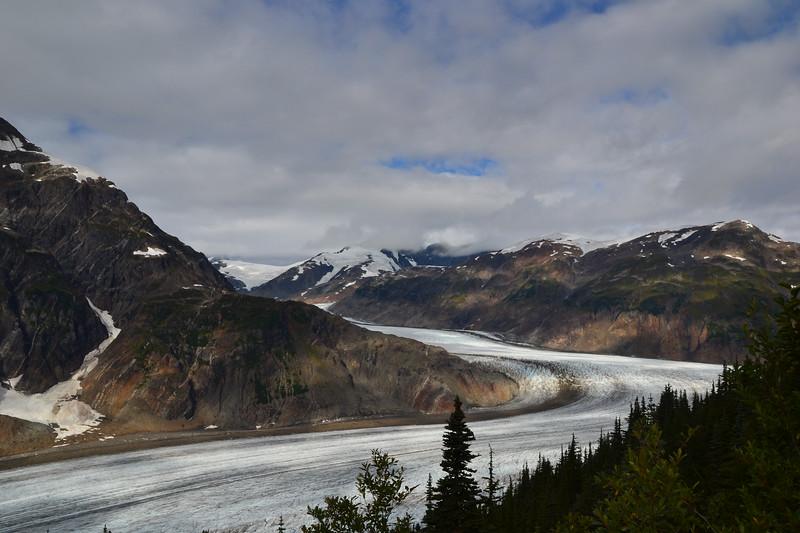 Salmon Glacier - 2014