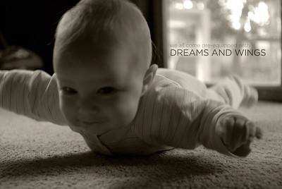 Dreams on Wings