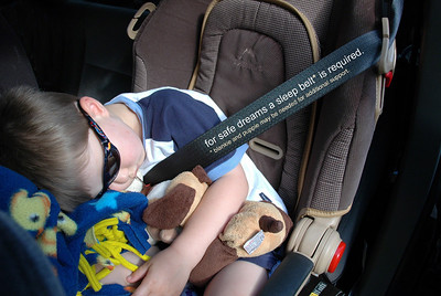 Sleep Belt
