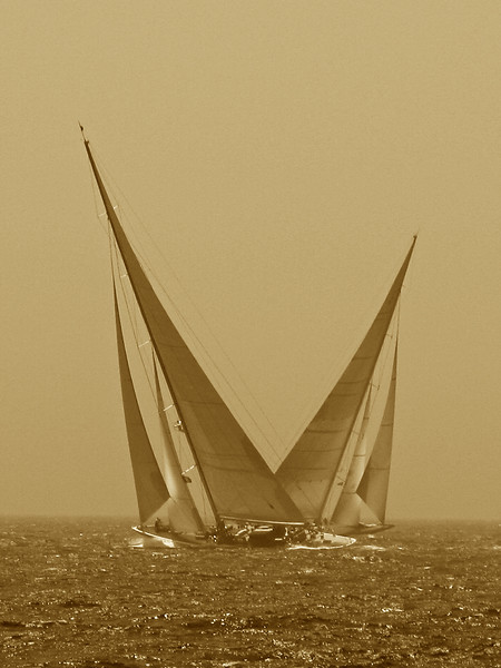 Battling Js  Hanuman and Ranger at Newport Bucket Regatta 2009
