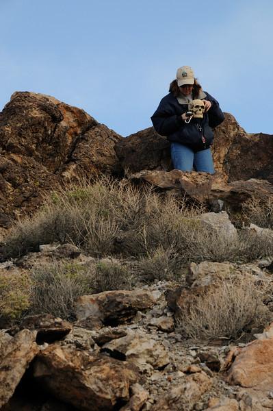 Geocaching near Beatty, NV
