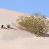 Big Dune geocache