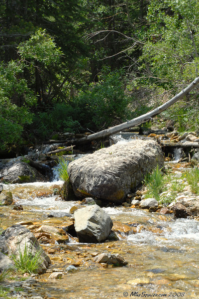 Sweetwater Canyon Creek.