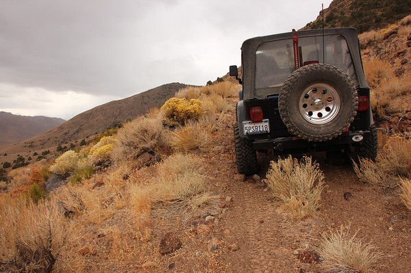 Western Nevada Trip, November 2008