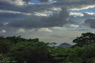 Mountain Rainforest, Monteverde, Costa RIca