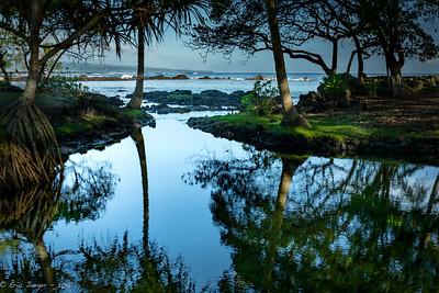 Lagoon, Hilo