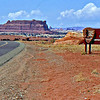 Welcome to Canyonlands!