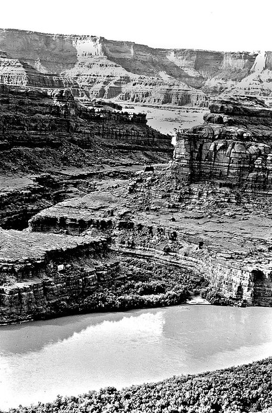 Close up of a tributary to the Colorado River. The anticline effect is clearly visible in the background with the Colorado River having cut through all the beds.