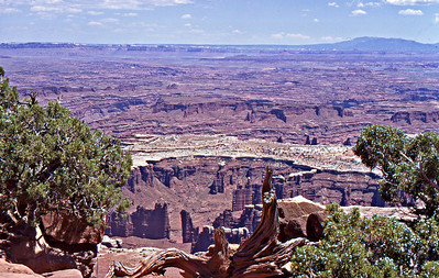 Island In The Sky, Canyonlands National Park, Utah