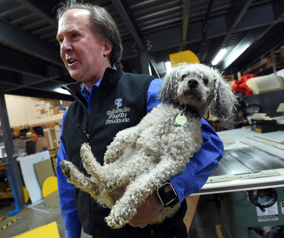 Shop Dog at Colorado Plastics