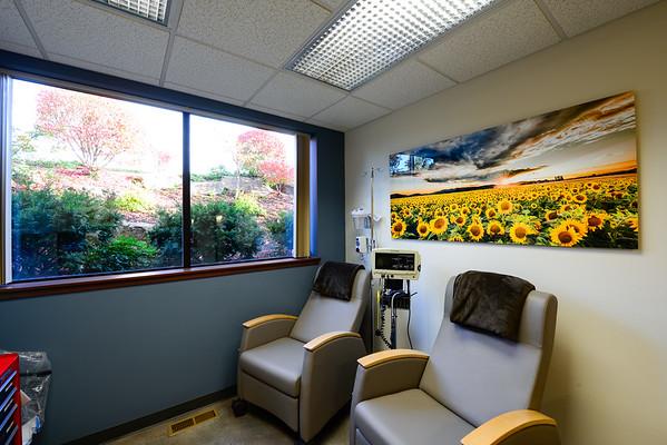 Deer Park Sunflowers 30 x 60