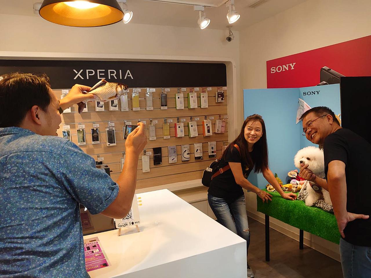 《Sony手機發表會講師》2020寵物同樂會 / Xperia 1 II台中寵物攝影