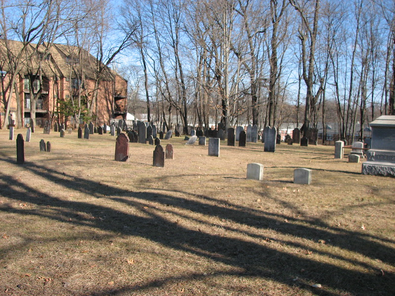 View from the cemetery entrance. Use it to locate the grave. Bayze's stone is the small white tipped one in the center of the photo.