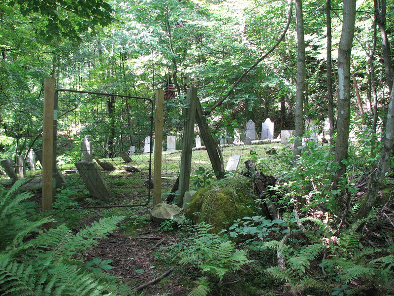 The cemetery entrance, located far from the road, and surrounded by woods.