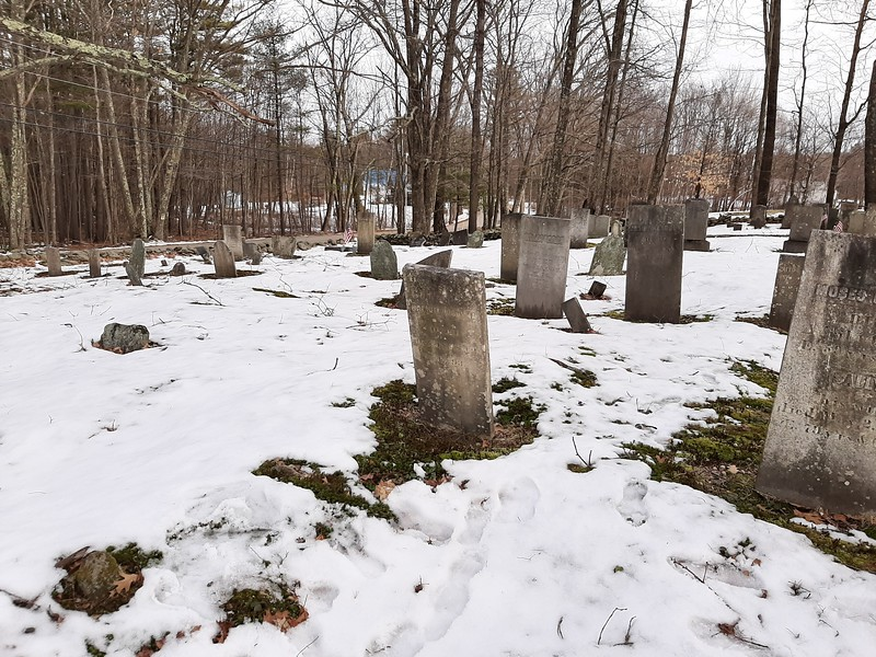 Goodwin's gravestone is in the center of this photo, and is tipped forward about 15 degrees. It is located in the right rear quadrant of the cemetery. Use this photo to help locate the grave.