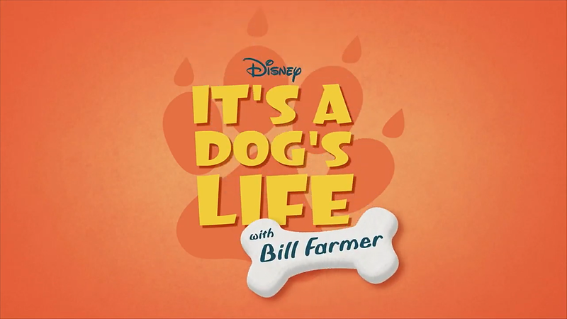 IT'S A DOG'S LIFE WITH BILL FARMER is the cross section of animal lover and Disney fan we don't deserve! #DisneyPlus
