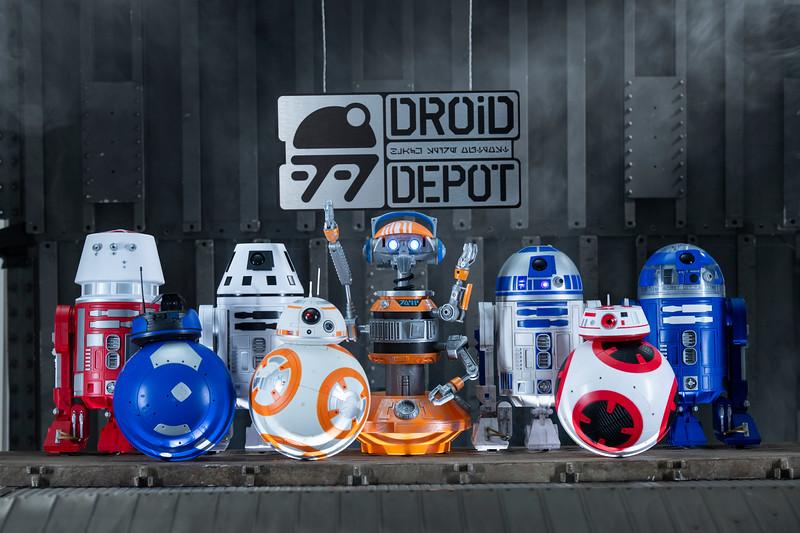 Star Wars: Galaxy's Edge Merchandise – Custom Droids