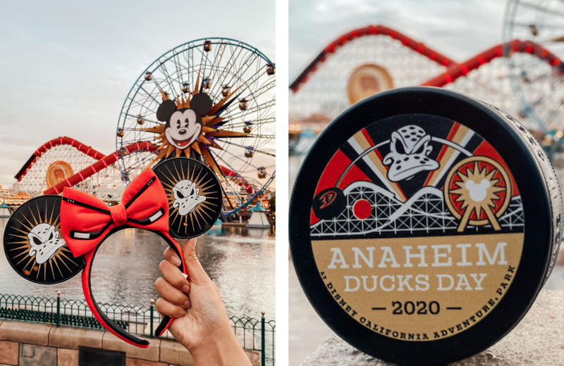 anaheim ducks day 20202