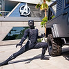 Black Panther at Avengers Campus