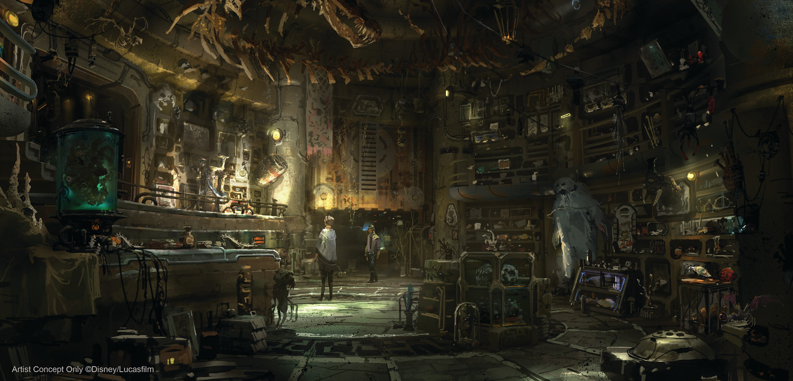 Dok-Ondar's Den of Antiquities in Star Wars: Galaxy's Edge will feature rare items from across the galaxy for sale, all part of Dok-Ondar's collection. Items will represent different eras of the Star Wars galaxy, including holocrons, ancient Jedi and Sith artifacts, lightsabers and more. (Courtesy of Disney Parks)