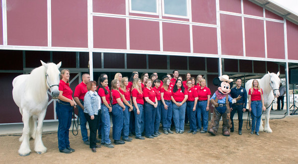 The crew at Disneyland's Circle D Ranch facility in Norco, post for a photo with two of the horses that stay there. Posing with the crew are Mickey Mouse, along with Mary Niven, vice president of the Disneyland Resort (in a light blue coat) and to the right of Mickey is Mikey Trujillo, Disneyland Ambassador. (Photo by Mark Eades, Orange County Register/SCNG) Taken in Norco at Circle D Ranch - Disney on Saturday, June 10, 2017.