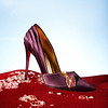 Christian Louboutin commemorative Vice Admiral Holdo shoe.