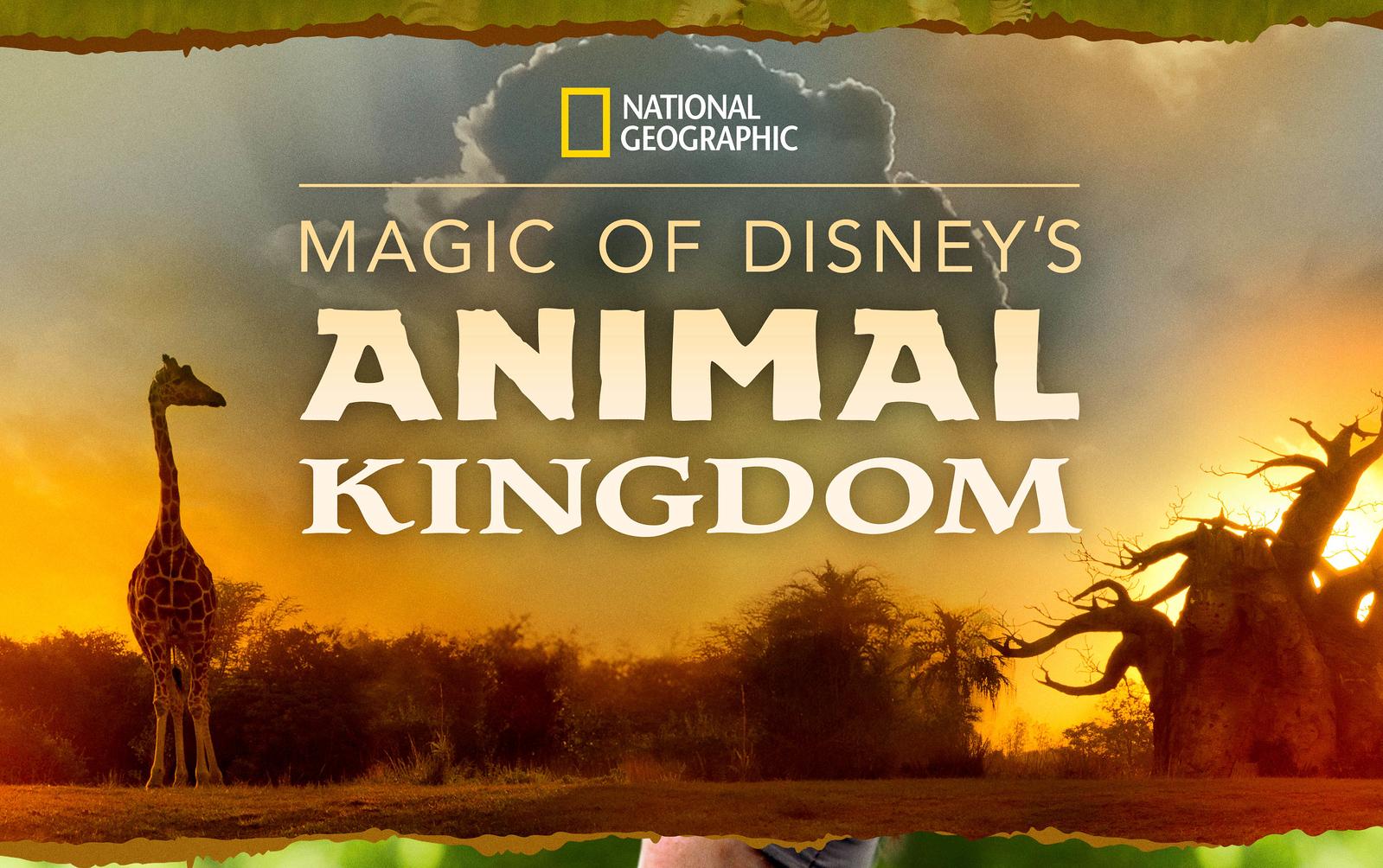 F01_NG_AnimalKingdom_keyart_13 5x20_Dated-cover