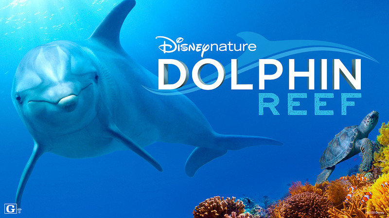 REVIEW: Disneynature DOLPHIN REEF brings colorful and fun explosion of aquatic life to #DisneyPlus
