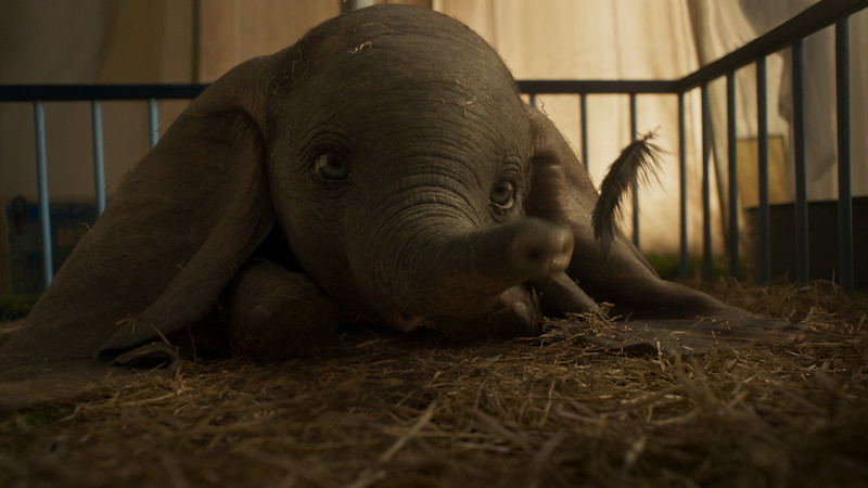 REVIEW: Can't believe how endearing and sweet; DUMBO is a heart-warming family adventure