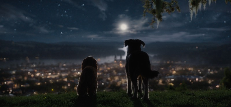 WATCH: New trailer offers look into LADY AND THE TRAMP Disney+ live action film