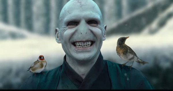 Watch: BEAUTY AND LORD VOLDEMORT hilarious viral mashup