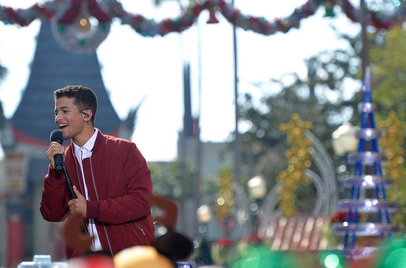 The Disney Parks Magical Christmas Celebration