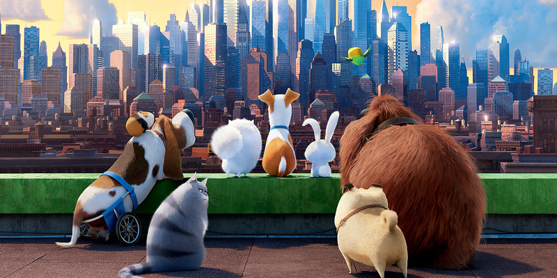 'The Secret Life of Pets: Off the Leash!' attraction coming to Universal Studios Hollywood