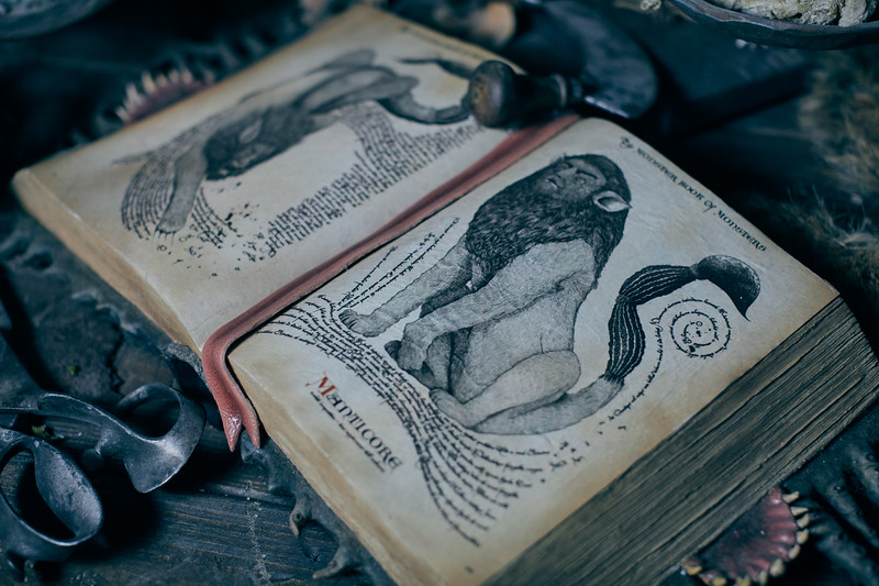 942<br /> Hagrids Magical Creatures and Motorbike Adventure<br /> 051019<br /> Line<br /> Ride Vehicle<br /> Interiors<br /> Exteriors <br /> Scope Shots