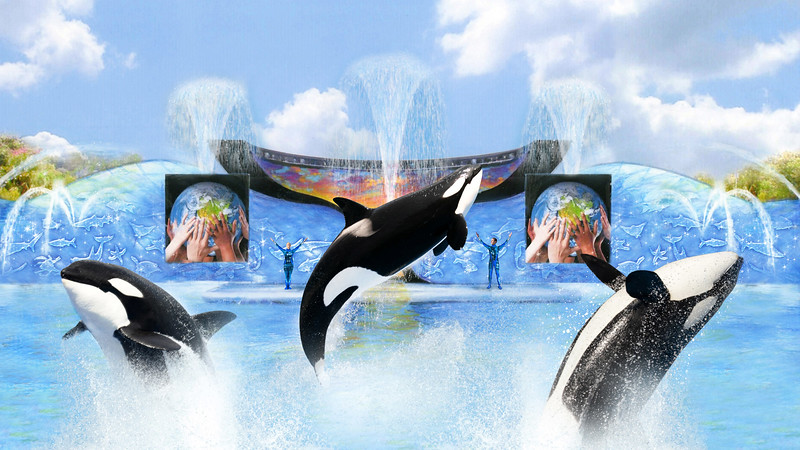 SeaWorld offering new Socal Pass and brand new attractions for 2018